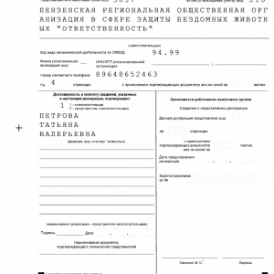 deklaratsiya2020